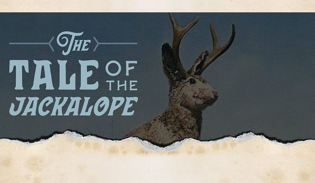 Discover Jaxon & The Tale Of The Jackalope
